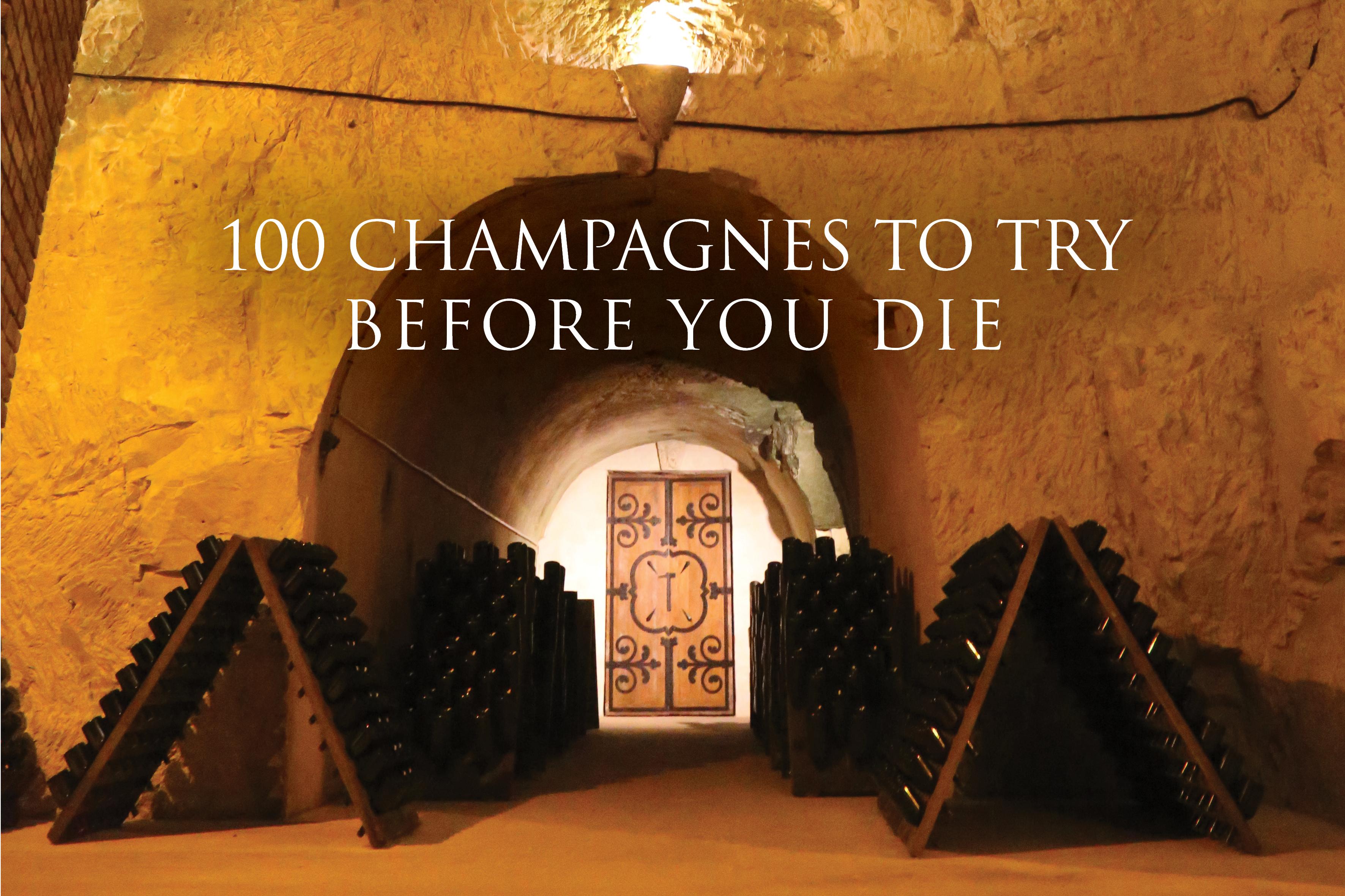 tyson stelzer champagne guide 2018